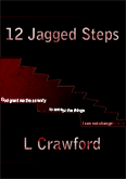 12 Jagged Steps book cover